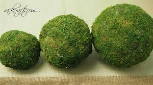 pure green moss balls dried organic rattan wedding garden home decor
