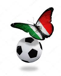 concept butterfly with mexican flag flying near the ball like