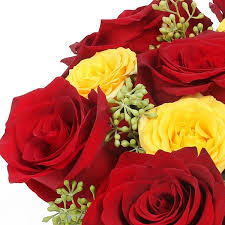 roses delivery roses delivery nyc plantshed
