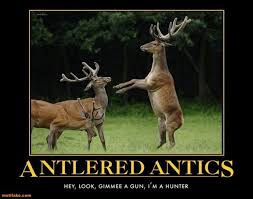 Funny Deer Memes - best ever funniest wildlife photo memes of 2016 quotations and