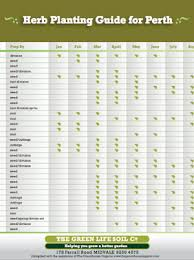 herb growing chart herb propagation free garden guide