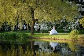 Vandusen Botanical Garden Wedding Affinity Wedding Photography Vancouver Wedding Photographer