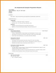 Inventory Skills Resume Computer Programming Skills Resume Resume For Your Job Application