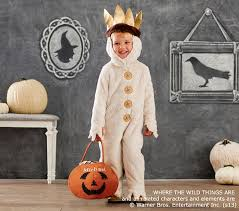 where the things are costume where the things are max costume pottery barn kids