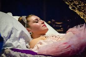 sleeping beauty 2014 u2014 cache valley civic ballet