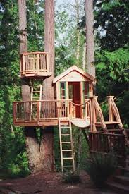Kids Backyard Forts The Ultimate Tree Forts Forts Tree Houses And Treehouse