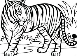 snow tiger coloring page coloring pages easter an illustration of white tiger page a lovely