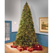 3 66 m 12 ft feel real bayberry spruce hinged tree with warm