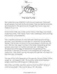 short story the sea turtle english unite english unite