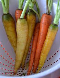 thanksgiving carrot side dish recipe southwestern rainbow carrots sally cooks