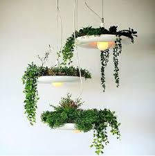 Christmas Decorating Pendant Lights by Discount Modern Design E27 Bulbs Plant Pendant Kitchen Led Hanging