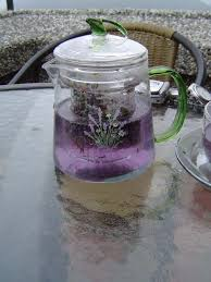 lavender tea lavender tea is made out of the dried purple pink and white