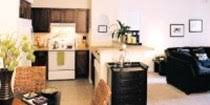 1 Bedroom Apartments Gainesville by Gainesville Apartments With 1 Bedroom On Swamp Rentals Swamp Rentals