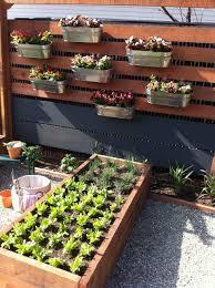 Small Garden Plant Ideas Gardens Design Ideas Internetunblock Us Internetunblock Us