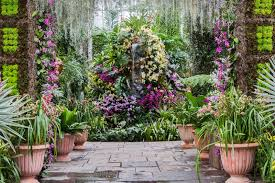 Botanical Garden Orchid Show New York Botanical Garden The Orchid Show Thailand The