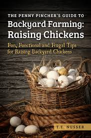 buy raising chickens in your backyard how to raise healthy