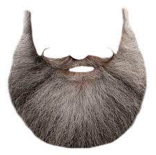 santa beard beard png transparent image pngpix
