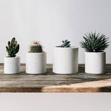 cult buys planters