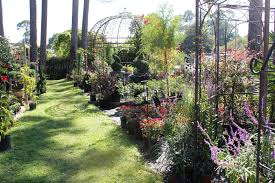 plant nursery home decor garden supplies landscape services