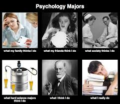 Meme Psychology - image 253741 what people think i do what i really do know