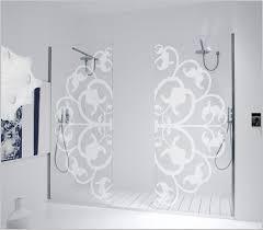 Decorative Shower Doors Fancy Shower Doors Lovely Decorative Shower Door Shower Box