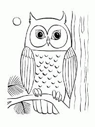 coloring pages alluring owl coloring pages free printable owl
