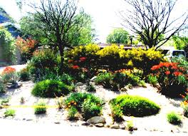 side yard ideas no grass landscaping cheap front for yards the