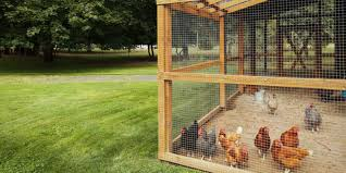 backyard chicken coop u2013 my chicken coops