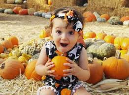 pumpkin patch maternity best pumpkin patches and farms near los angeles