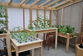 the california greenhouse u2013 maximus gardens