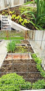square foot garden layout ideas 153 best garden raised beds and square foot gardening
