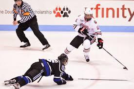 bentley college hockey bailey putnam u2013 the huntington news