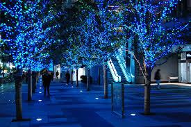 blue light shiny trees image 197891 on favim