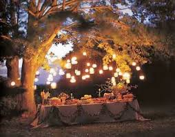 Backyard Birthday Party Ideas For Adults by 108 Best Backyard Party Images On Pinterest Backyard Parties