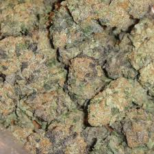 strains related to scout cookies cookie family