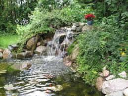 Is A Backyard Pond An Ecosystem 19 Best Backyard Ponds Images On Pinterest Backyard Ponds