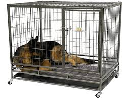 amazon com go pet club heavy duty metal cage 43 inch by 30 by
