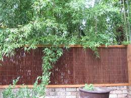Backyard Fencing Ideas Fence Design Ideas Get Inspired By Photos Of Fences From