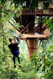Backyard Zip Line Ideas Zip Lining To Treehouse 7 Building A Tree House Pinterest