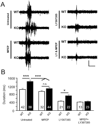 altered neocortical rhythmic activity states in fmr1 ko mice are