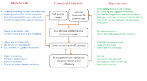 conceptual framework sample thesis how to create a conceptual framework for thesis revised conceptual framework edin s honors thesis stephen powell revised conceptual framework edin s honors thesis stephen powell