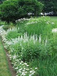93 best white gardens images on pinterest moon garden white
