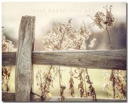 amazon com rustic country farmhouse decor golden fence landscape