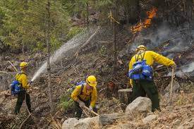 California Wildfires Hume Lake by Three Firefighters Killed Four Injured Battling Washington State