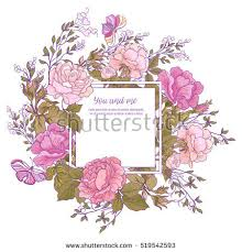 rose flower stock images royalty free images u0026 vectors shutterstock