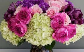 peonies flower delivery pink and peony purple flower arrangement gardening flower