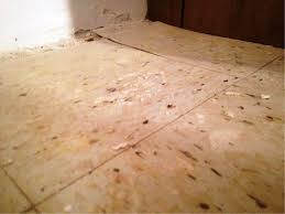 Laminate Flooring Over Asbestos Tile Flooring Asbestos Floor Tiles Stunning Images Concept Of