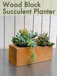 make succulent planters from wood blocks diy projects usefuldiy