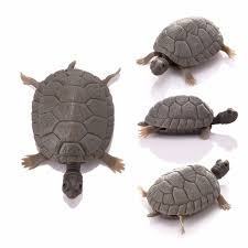aliexpress buy 1pcs simulated turtle decoration plastic