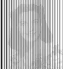 19 best optical illusions images on pinterest optical illusions